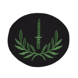 Class 1 Infantry Soldiers – Qualification – Infantry Regiments - British Army Badge