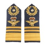 Air Marshall – Shoulder Board Epaulette - Royal Air Force Regiment - Royal Air Force Badge