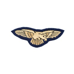 Preliminary Flying Pilot Qualification Badge – Royal Air Force (RAF)