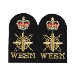 Weapon Engineering Branch Submarine Sensor - Chief Petty Officer - Royal Navy Badge