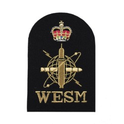 Weapon Engineering Branch Submarine Sensor - Petty Officer - Royal Navy Badge