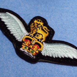 The Army Air Corps badge. As part og the British Army there are eight regiments of the AAC as well as other operations all over the world.